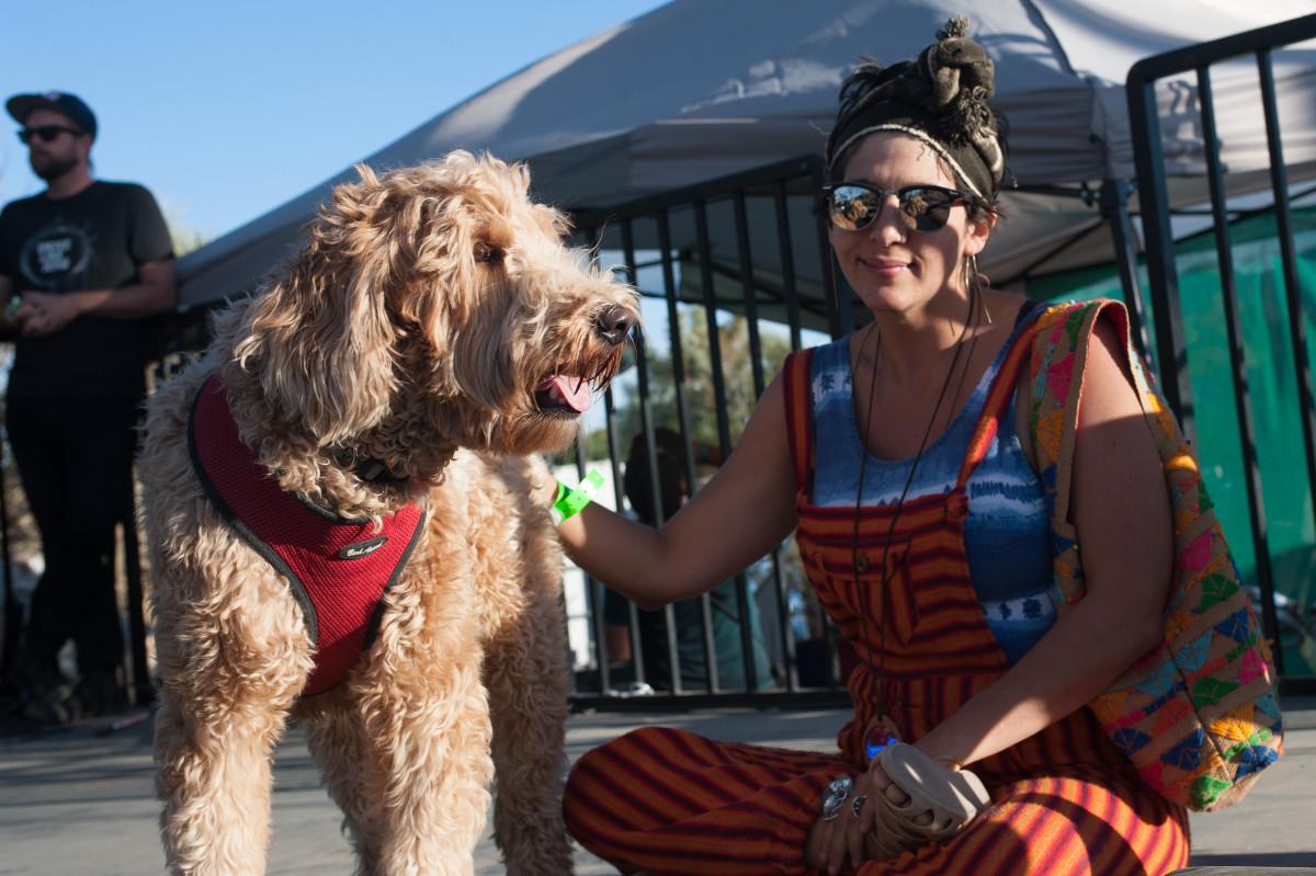 images/Desert Daze 2016/Jenny Lee dog Ludo
